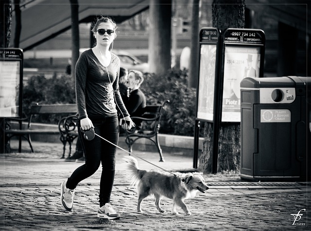 dog-walking-03
