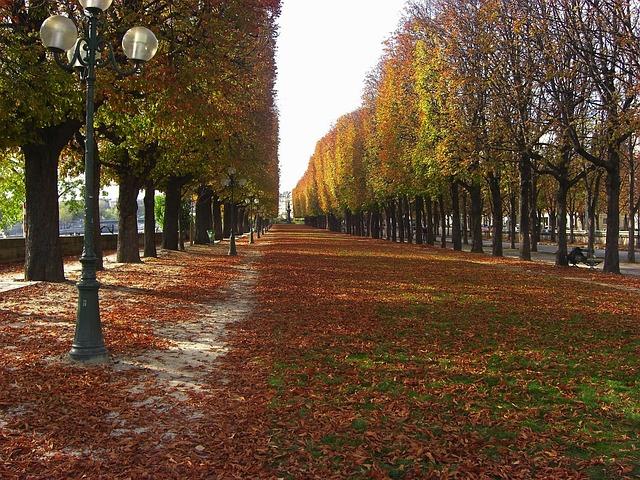 autumn-in-paris-03