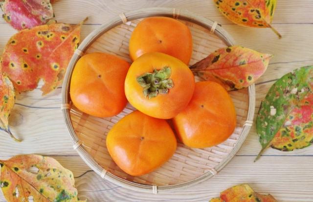 autumn-ingredients-07