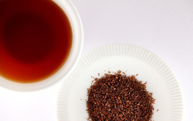 rooibos-tea-01